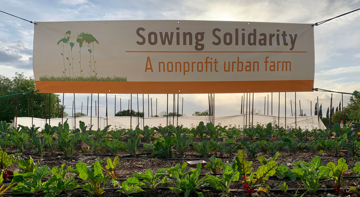Sowing Solidarity sign and farm